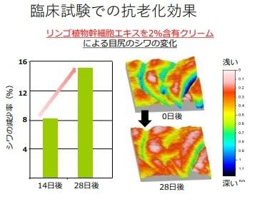 リンゴ幹細胞エキスの肌への効果-min