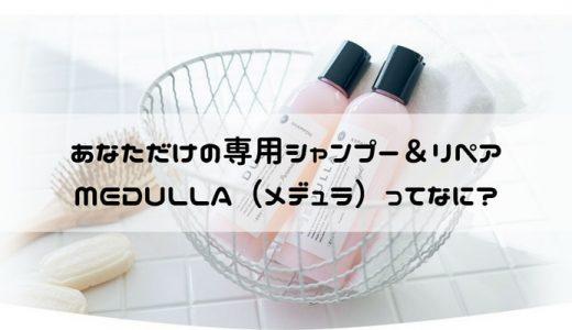 メデュラ【自分だけのオーダーメイドシャンプー】で美容師おすすめシャンプーを超える!