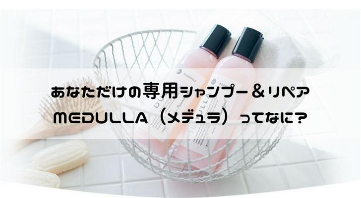 メデュラ商品紹介-min